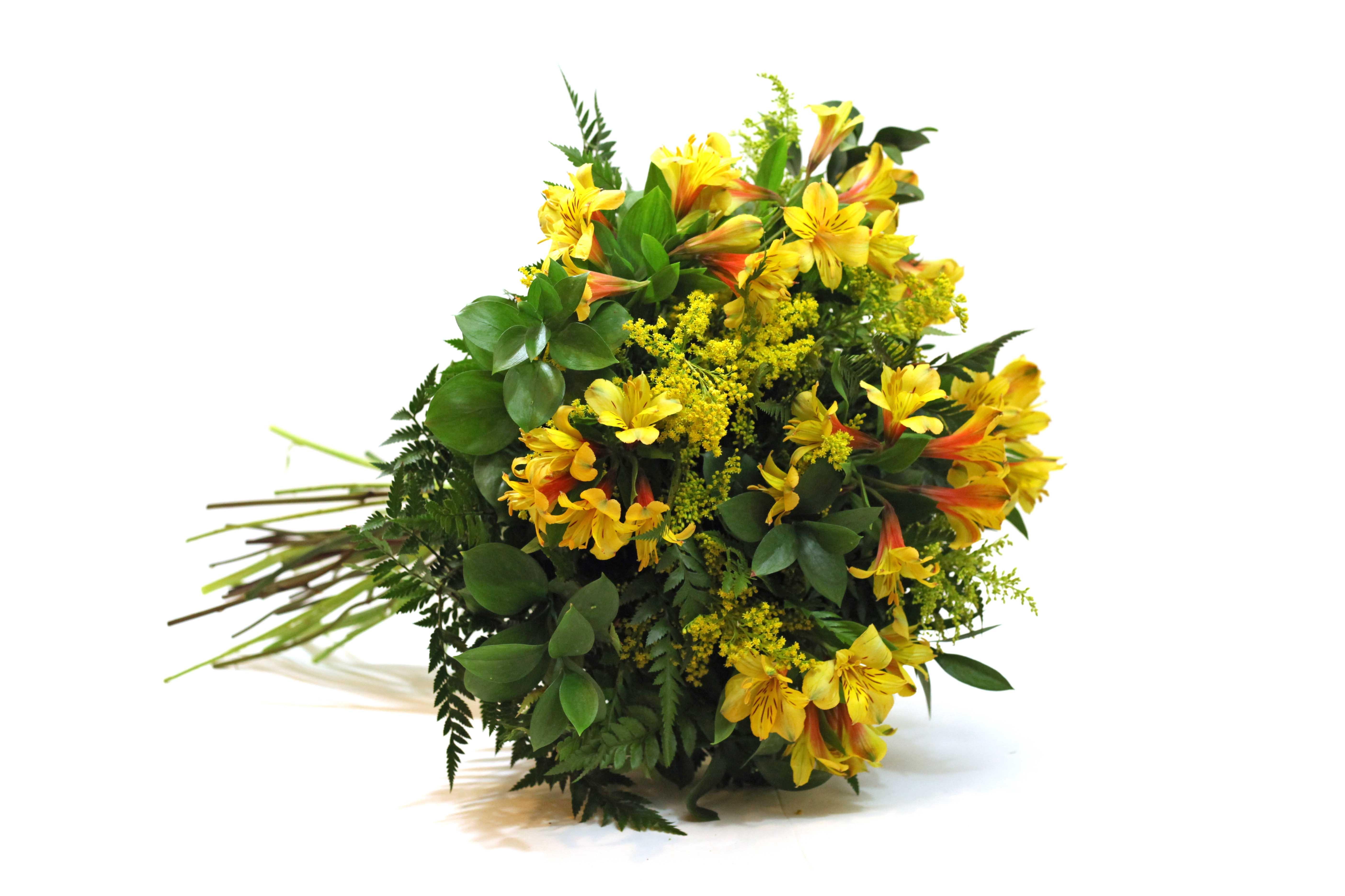 Bouquet de Alstromélias 08 Hastes